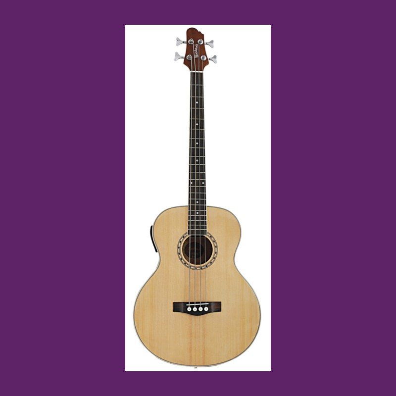 Acoustic Guitar Laminated Back And Sides
